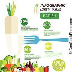 radish infographics - radish , infographics. vegetables...