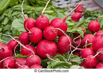 radish - food series: freshly grown red radish on market