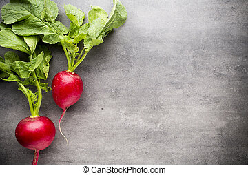 Radish. - Radishes on the grey background. Still life.