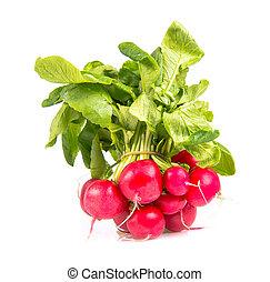 radish - heap of radishes isolated on white