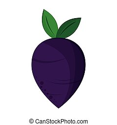 Radish vegetable food isolated vector illustration graphic...