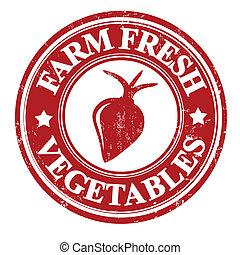 Radish vegetable stamp or label - Radish vegetable grunge...