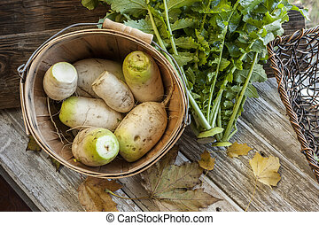 Radishes inside a bucket.
