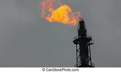 rafineria, pochodnia, -, powietrze, zaświecić, wieża, ...
