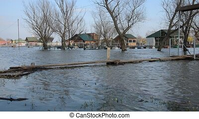 Raft River Flooding - River water during a flood with trees...