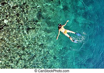 rafy, na, kobieta, koral, płytki, młody, kostium kąpielowy, tropikalny, morze, jasny, snorkeling