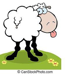 ragasztás, sheep, nyelv, övé, ki