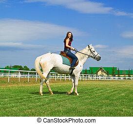 ragazza, cavalcioni, uno, cavallo