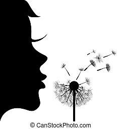 ragazza, dandelion.
