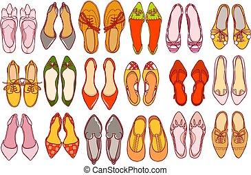 ragazza, donna, scarpe, colorito, set., collezione, footwear., vettore