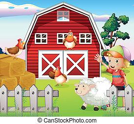 ragazzo, animali, fattoria