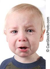 ragazzo bambino, poco, pianto