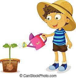 ragazzo, pianta, irrigazione, sfondo bianco