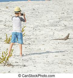 ragazzo, poco, fotografare, iguana
