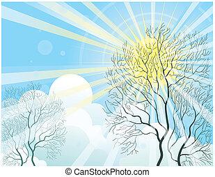 raggi sole, e, albero
