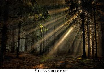 raggi sole, foresta