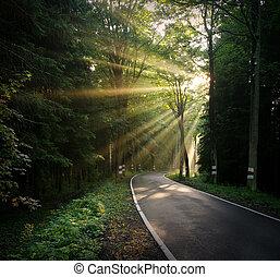 raggi sole, sopra, strada