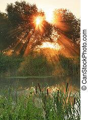 raggi sole, su, alba, su, il, fiume