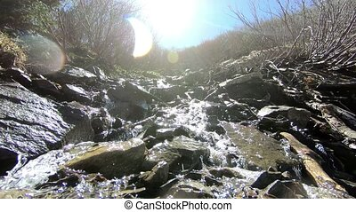 raging mountain stream on forest free camera