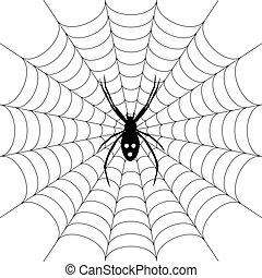 ragno, spiderweb