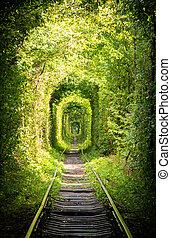 rail., δρόμοs