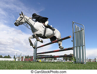 Rail Falling - A horse taking a rail out as it goes over a...