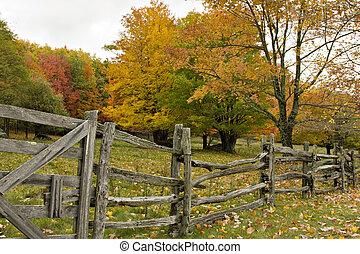 rail, fente, barrière, automne
