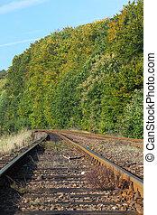 Rail Road Tracks - outdoor