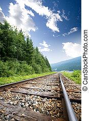 Railraod Tracks - Railroad tracks in nature