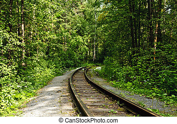 railroad in forest - railroad track winding through forest
