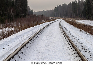 Railroad in winter forest