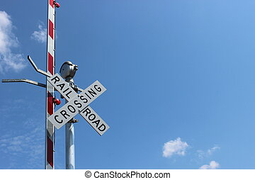 Railroad sign with bright blue sky - Railroad sign and...