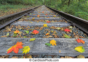 Railroad Track with Fall Foliage