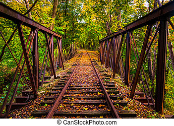 Railroad tracks covered in autumn leaves, near Stewartstown, Pennsylvania.