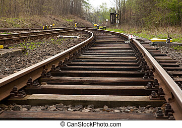 Railroad Tracks - Crossing of Railroad Tracks in the Forest