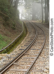 Railroad with nobody in forest with fog in Alishan National Scenic Area, Taiwan, Asia.