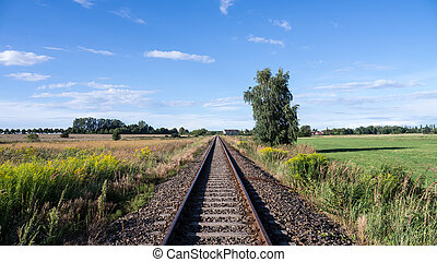 rails, in, landscape