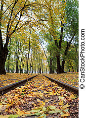 Rails in the city park with fallen yellow autumn leaves