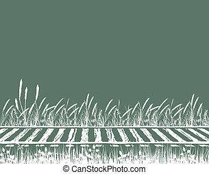 Rails - Illustration of grassy railway tracks