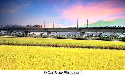 Railway bridge with nice paddy for adv or others purpose use