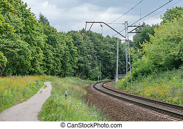 Railway by the forest at summer day time.