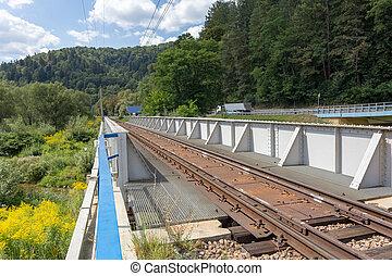 Railway metal bridge near road and forest
