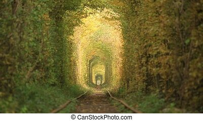 Railway tunnel covered