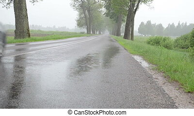 rain car asphalt road