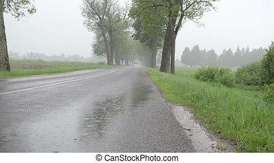 rain car asphalt road