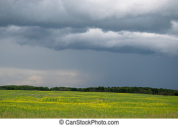 Rain clouds approaching above farmland, Saskatchewan, Canada.