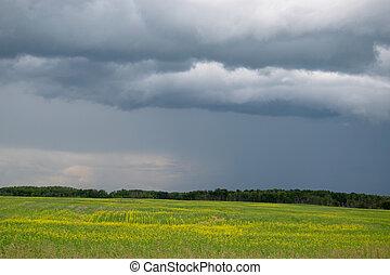 Rain clouds approaching above farmland, Saskatchewan, Canada.