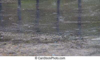 Rain Drips Through The Puddles. Summer rain drops falling on...