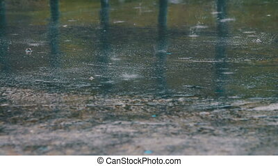 Rain Drips Through The Puddles