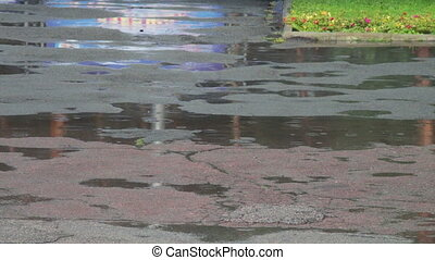 Rain drips through the puddles.